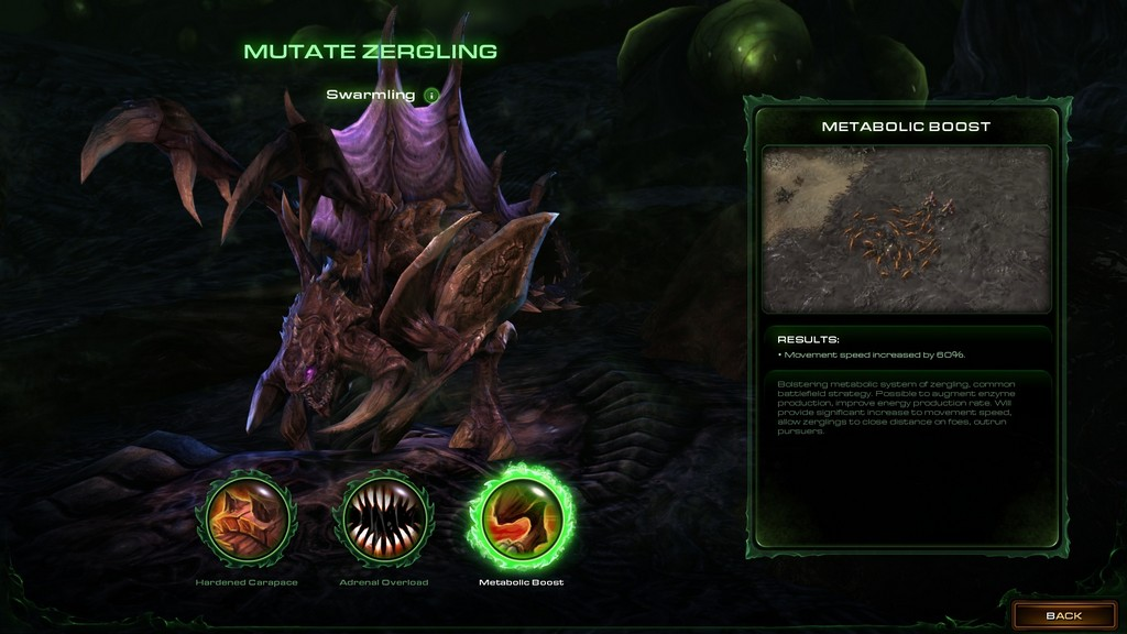 Heart of The Swarm 29